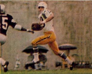 Lance Alworth Catching American Footba...